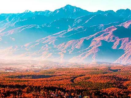 八ヶ岳の紅葉イメージ