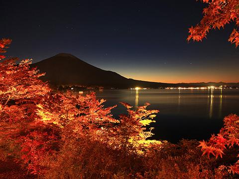 夕焼けの渚・紅葉祭りイメージ