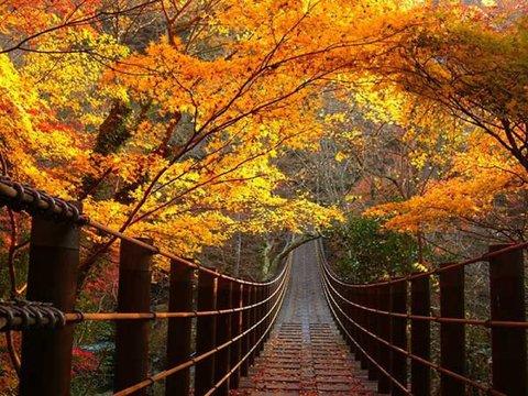 花貫渓谷イメージ
