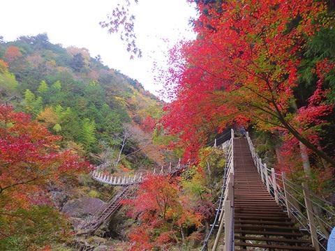 大柳川渓谷イメージ
