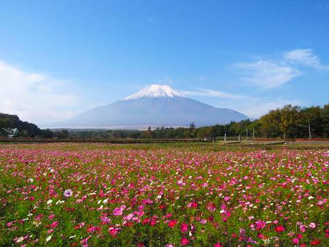 花の都公園イメージ